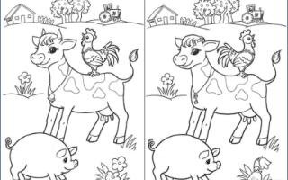 Квест в группе детского сада