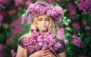 Как выбрать любимые цветы