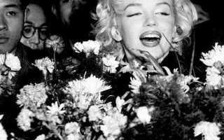 Какие цветы дарить актеру мужчине