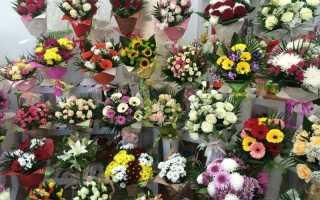 Как следует подбирать цветы