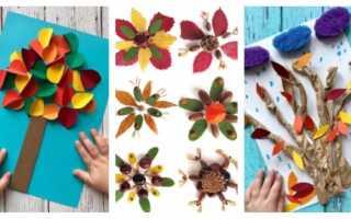 Аппликации осень в детском саду