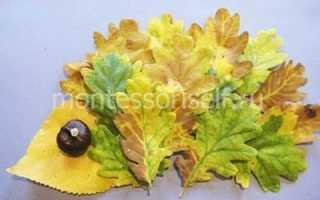 Аппликация из осенних листьев для детского сада