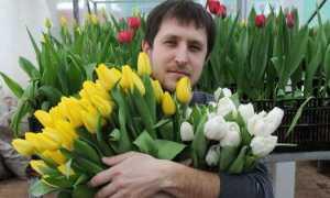 Цветы любимому мужчине