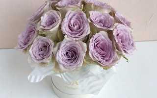 Фото дарения цветов