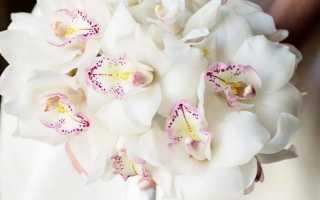 Букеты цветов для девушки