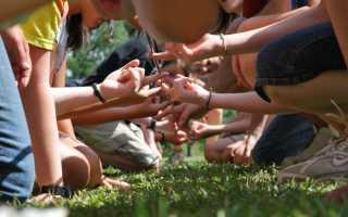Игра на знакомство с детьми в лагере
