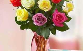 Самые красивые цветы для жены