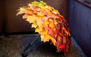 Поделки из листьев клена для детского сада